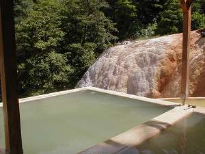二股らぢうむ温泉旅館のラジウム温泉